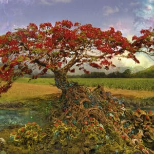Buy HEYE Strontium Tree (1000 Piece Jigsaw Puzzle) and other great jigsaw puzzles only at Jigsaw Nation