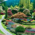 the-butchart-gardens-sunken-garden-55d29e0f0be269ea49ed0bfc8d3fbc3d
