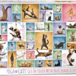 yoga-cats-ebfe1e6b81f51d2f2c949e4a4e756361