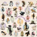 yoga-puppies-e60efa1530df91397aa1509fd42f10f2