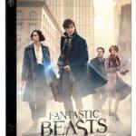 fantastic-beaststm-the-search-a7ca9f484542b784bad00ea1fa720552