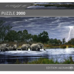herd-of-elephants-fb58cceaa04646713d4b286c98ae7300