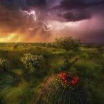 stormy-horizon-c768571dfd46c54cb6d8a09a7d498fbb