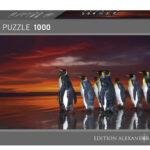 king-penguins-aacc2d672254ba201e543ea7cbf84f65
