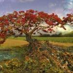 strontium-tree-98bb1d7360f8e76beb82a3e08b07754c