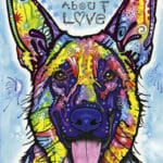dogs-never-lie-fd99a3dc1d3b2b45e847a16804adb2a2