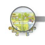 monkey-habitat-28916e883c0665b0619b2577dd56f57f